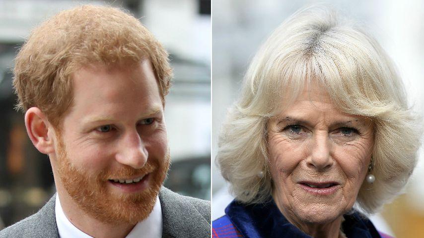 Nach Tod von Diana: Prinz Harry hatte Probleme mit Camilla!
