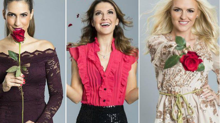 Damenwahl: Jetzt laden die Bachelor-Ladys zum Date!