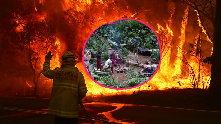 Danni Büchner und Co: Dschungelcamp von Waldbränden bedroht?