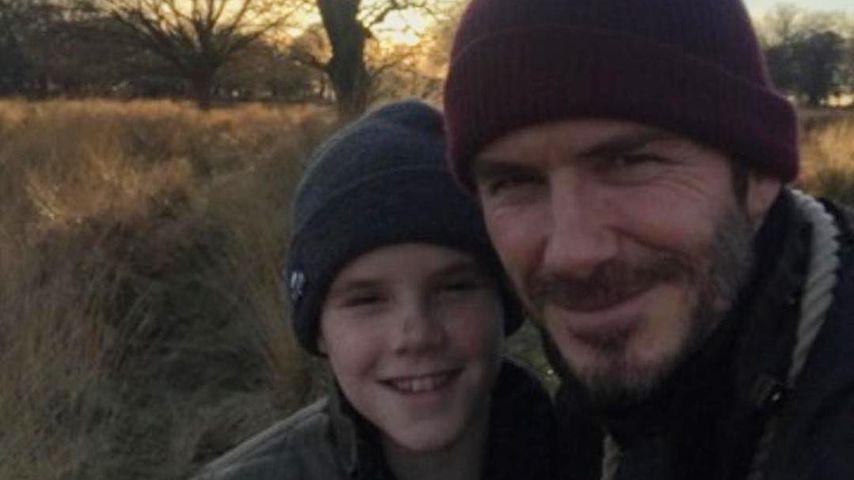 Cruz und David Beckham im Richmond Park in London