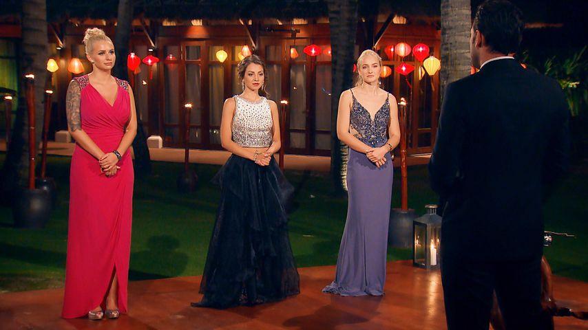 Die Bachelor-Kandidatinnen und Bachelor Daniel Völz in der achten Nacht der Rosen