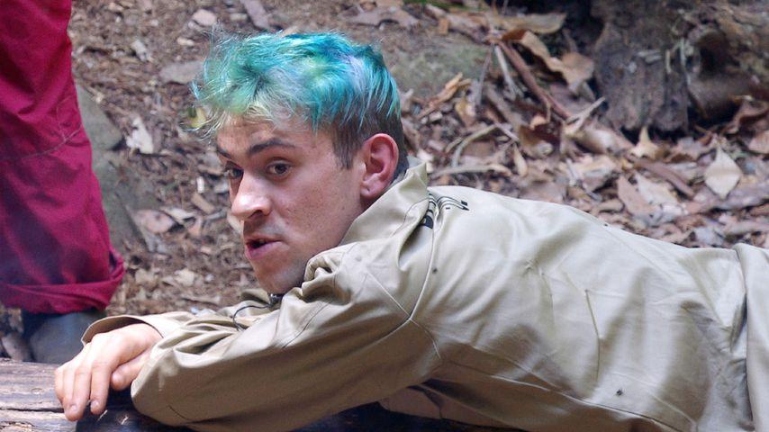 Endlich Beef im Busch: Daniele mischt den Dschungel auf!