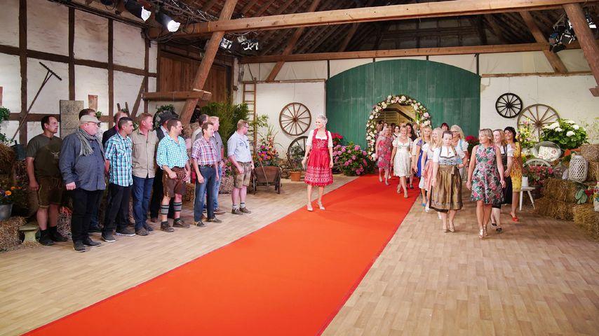 """Das Kennenlernen beim """"Bauer sucht Frau""""-Scheunenfest 2018"""