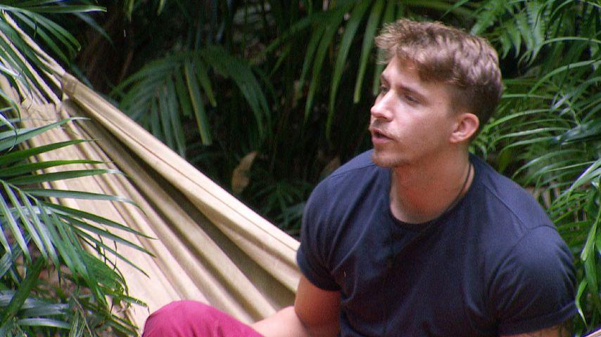 Nach Giulianas Aus: David Friedrich liegt im Dschungel vorn!