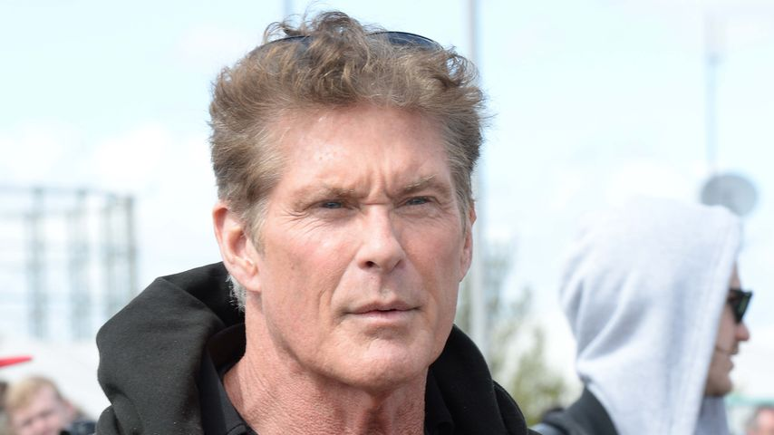 Looking for Money: David Hasselhoff total pleite