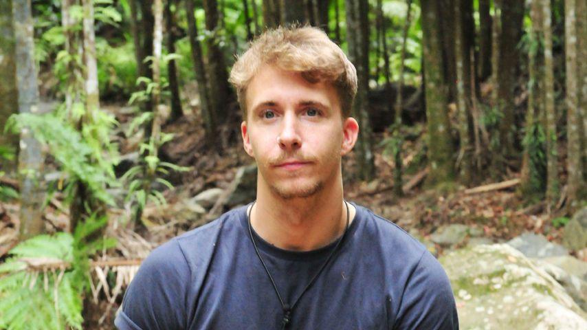 Dschungel-Geist David: Bachelorette-Buddy lästert schon!