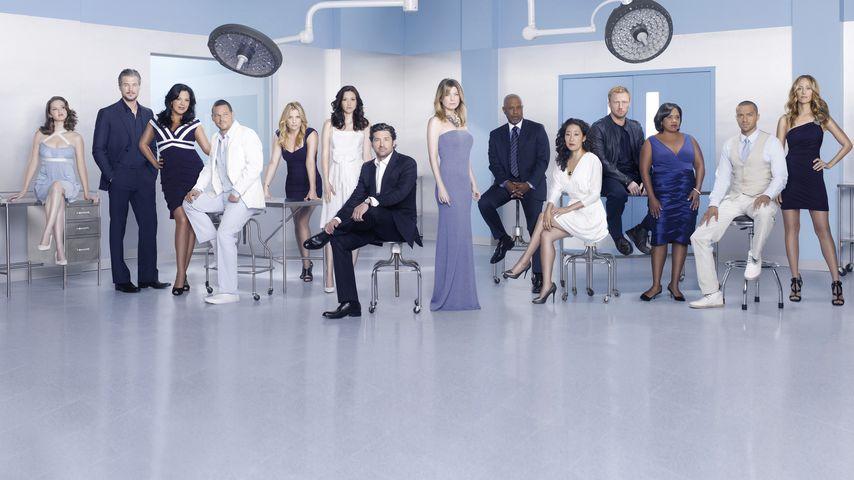 """Der Cast von """"Grey's Anatomy"""" 2010"""