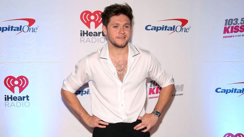 Der Sänger Niall Horan im Dezember 2019