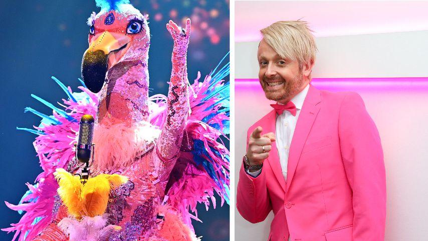 """Collage: Der """"The Masked Singer""""-Flamingo und Ross Antony"""