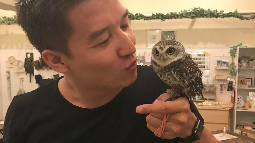 Der vietnamesische Bachelor 2018 Nguyen Quoc Trung