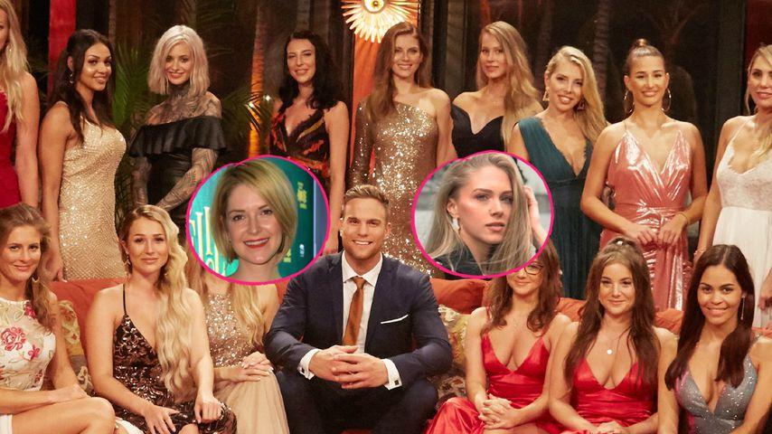 Fame-geile Bachelor-Girls: Ex-Kandidatinnen sind entsetzt!