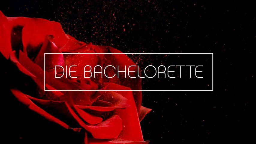 """RTL verrät: So geht es mit """"Die Bachelorette"""" und Co. weiter"""