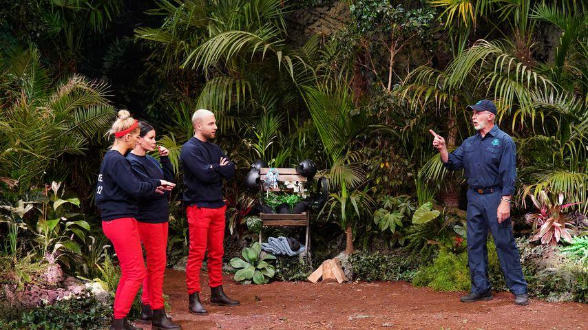 Die Dschungelshow-Kandidaten Xenia, Djamila und Filip mit Dr. Bob