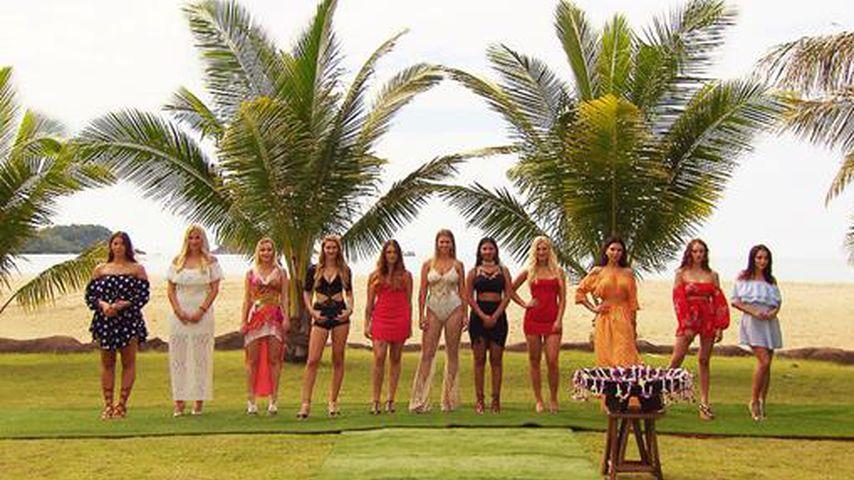 """Erste Kandidaten: Die elf """"Temptation Island""""-Single-Ladys!"""