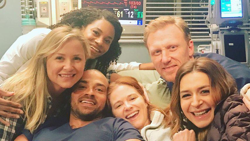 GreyS Anatomy Neue Staffel