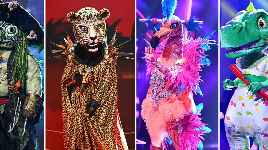 """Das """"The Masked Singer""""-Finale: Die Promi-Favoriten und Co."""