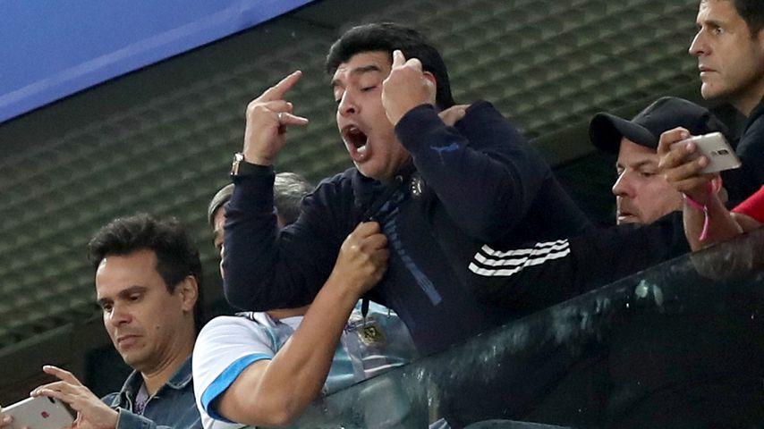 Diego Maradona auf der VIP-Tribüne