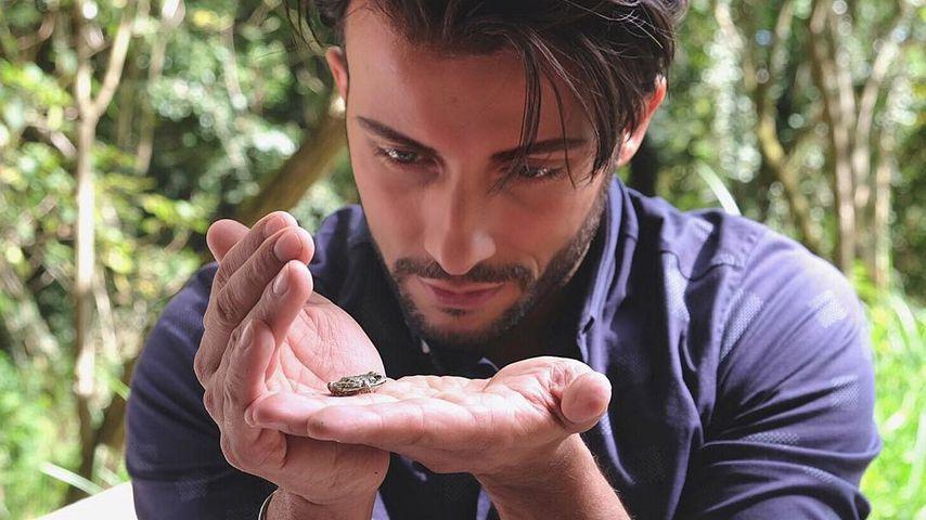 Essen vom Angelverein: Domenico probt Dschungel-Prüfungen!