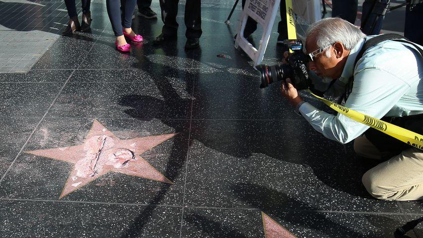 """Donald Trumps zerstörter Stern auf dem """"Walk of Fame"""""""