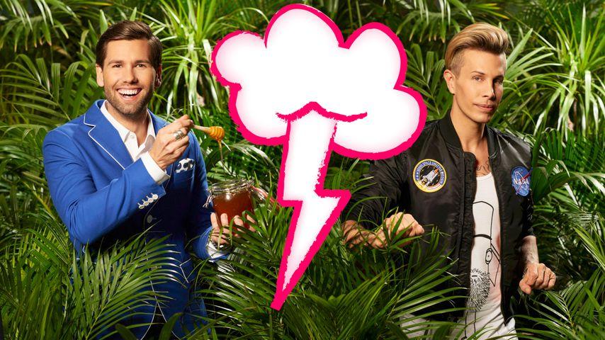1. Dschungel-Beef: Florian Wess attackiert Honey verbal!