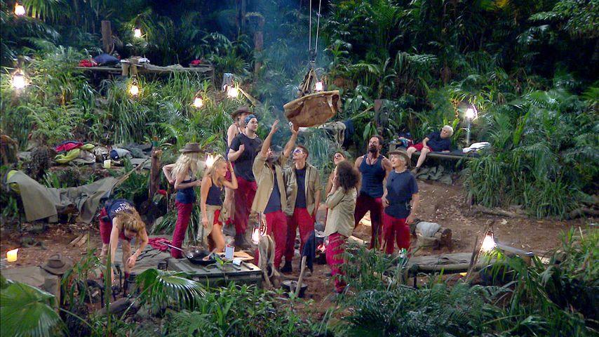 Nach dem Dschungel: Damit wollen Camper jetzt Geld machen!