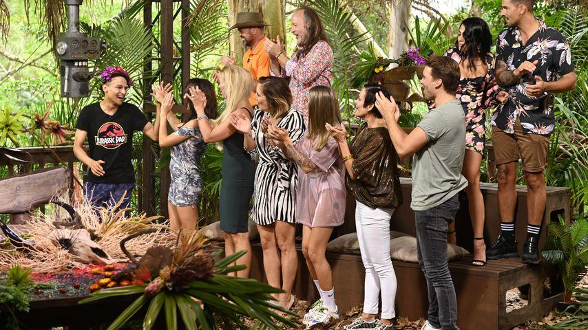 Dschungelkönig Prince Damien und die anderen Dschungel-Bewohner aus 2020