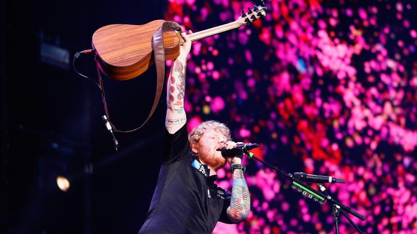 Alle veräppelt: Ist Ed Sheerans Löwen-Tattoo nur ein Fake?