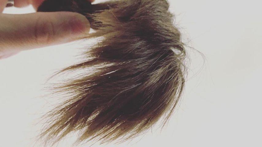 Felix von Jascheroffs abgeschnittene Haare