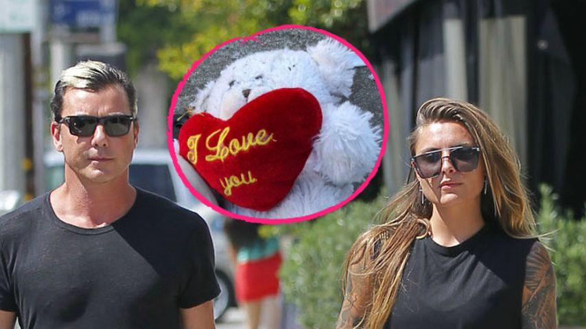 Gavin Rossdale gesteht seine Liebe – und SO reagiert Sophia!