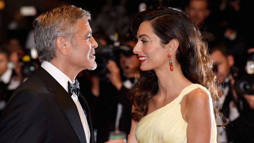 """George und Amal Clooney bei der """"Money Monster""""-Premiere"""