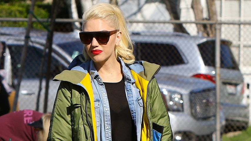 Skurrile Idee: Gwen Stefani entwirft hippe Hundekollektion