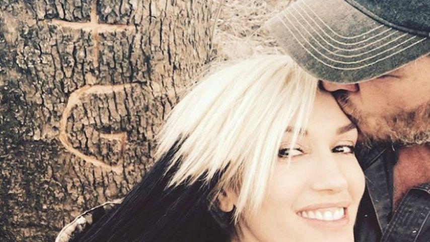 """B+G"": Süßer Liebesbeweis bei Gwen Stefani & Blake Shelton!"