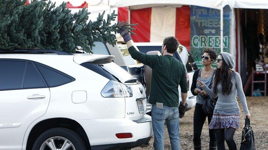 Halle Berry schwer beladen mit dem Weihnachtsbaum