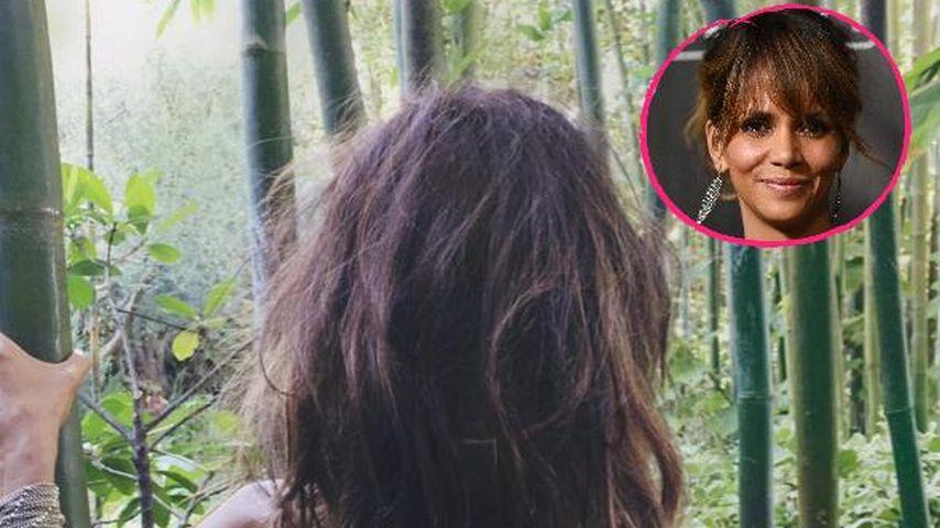 1. Instagram-Pic: Halle Berry macht sich im Urwald nackig!
