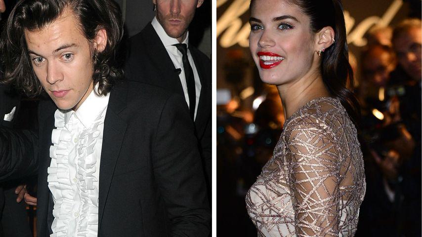 Harry Styles: Heiße Hotel-Nacht mit Dessous-Model?