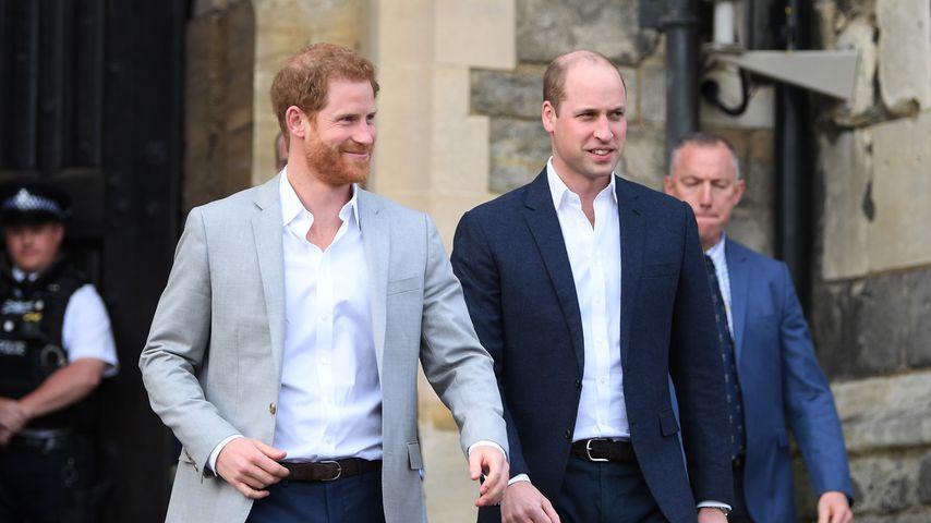 Prinz Harry und Prinz William in Windsor