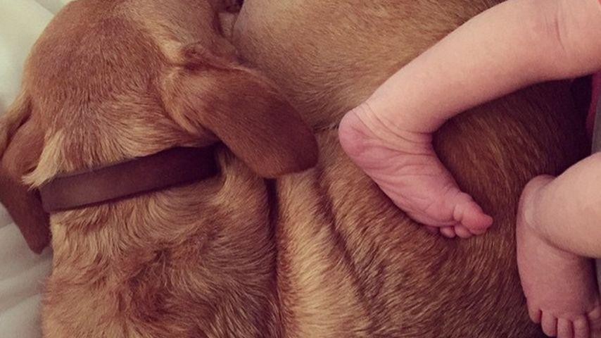Klitzeklein: Haylie Duff teilt 1. Baby-Foto von Tochter Ryan