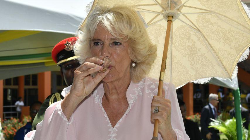 """""""Das haut einen um!"""" Herzogin Camilla gönnt sich Schluck Rum"""
