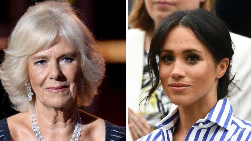 Verbündete: Riet Camilla Meghan wirklich zu Royal-Rückzug?