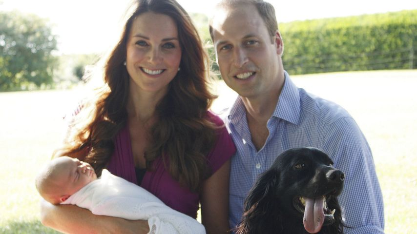 Herzogin Kate mit Prinz William und dem kleinen Prinz George im Park