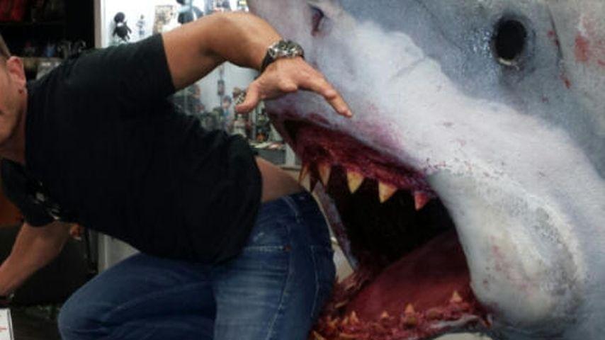Noch ein Mini-Hai? Ian Ziering will mehr Kinder!