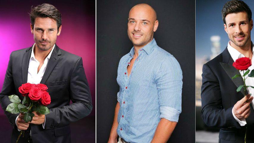 Leonard, Jan & Co.: So süß sind die Bachelor-Stars als Papas