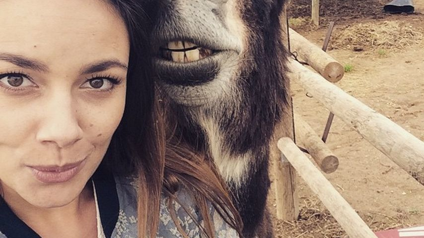 Tierischer Friseur: Janina Uhse in Esel-Behandlung