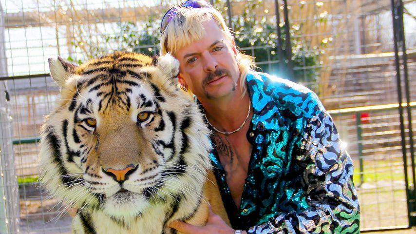 """Polizei: Menschliche Überreste im """"Tiger King""""-Zoo gefunden?"""