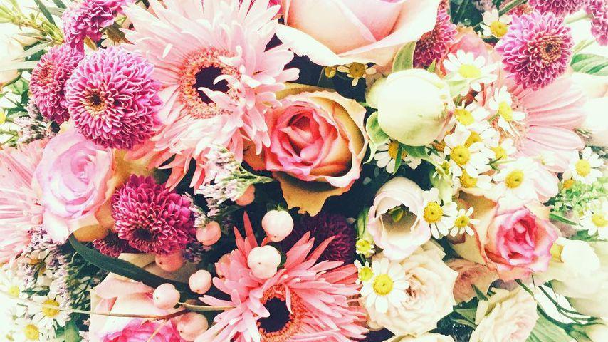 Johannes Strates Blumenstrauß für Freundin Anna Angelina Wolfers