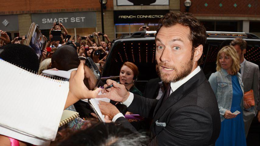 """Jude Law bei der """"Anna Karenina""""-Premiere in Toronto"""