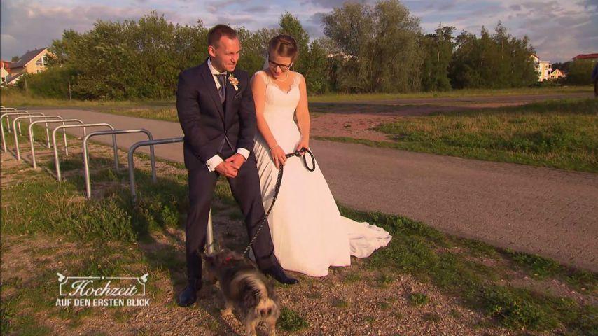 HadeB-Julian muss sich entscheiden: Hund oder große Liebe!