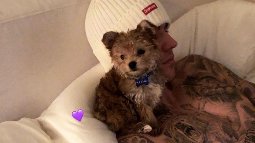 Justin Bieber mit seinem Hund im Dezember 2018