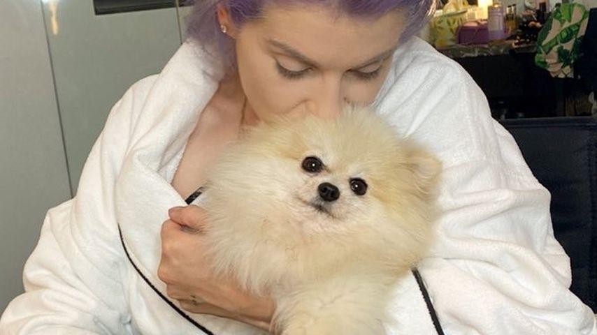 Kelly Osbourne mit einem ihrer Hunde im September 2020