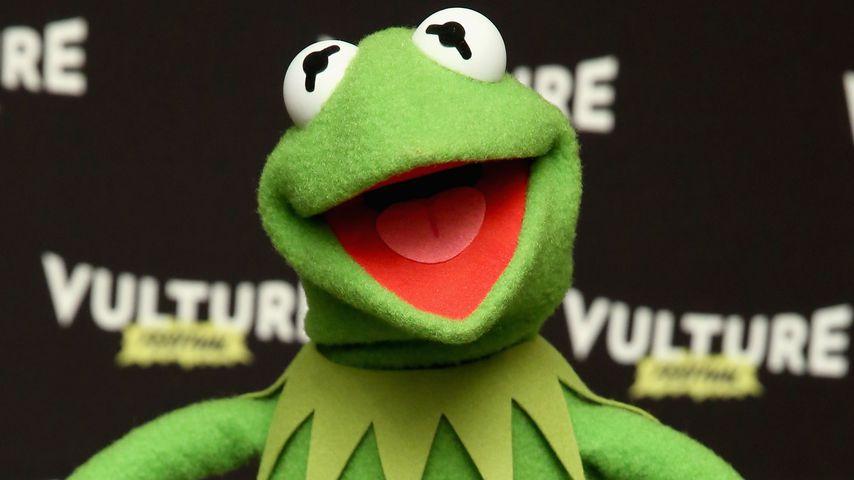 Kermit der Frosch: Denise ist gar nicht seine neue Freundin!